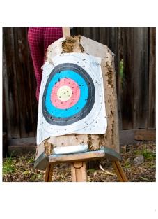 17#target