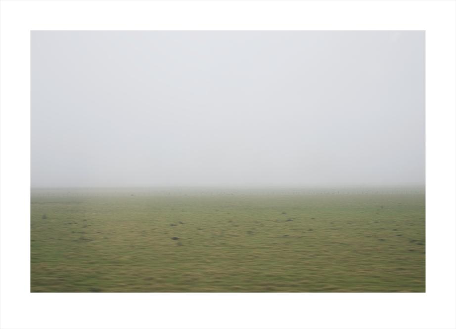 fog-green