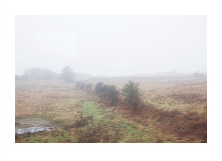 more-fog